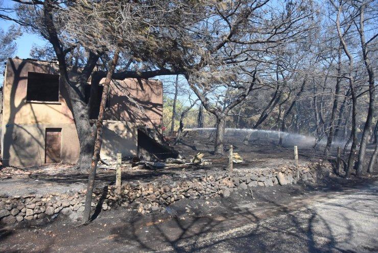 İzmir'de orman yangınına karadan ve havadan müdahale sürüyor