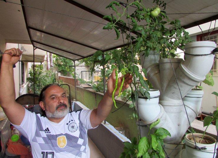 Balkonuna borulardan 'sebze ağacı' yaptı