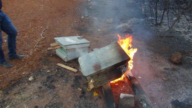 Orman yangınında ağılları yanan vatandaş gözyaşlarına hakim olamadı