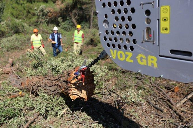 Turgutlu'da orman tahribatı havai hatla engelleniyor