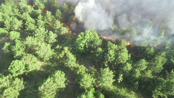 Edirne'deki orman yangını 9 saatte söndürüldü