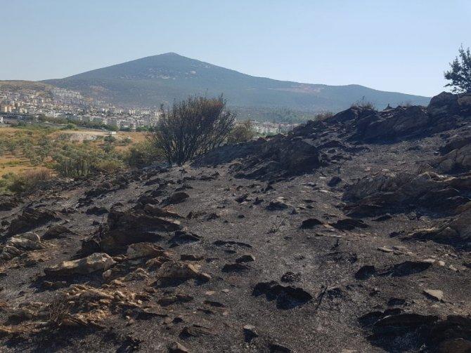 Zeytin, badem ve armut ağaçları zarar gördü