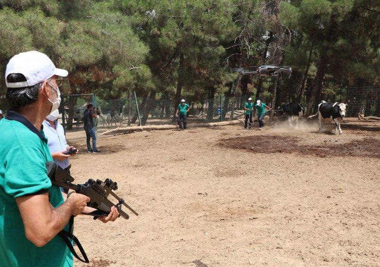 Gaziantep'te, 'kurban yakalama timi' eğitimini tamamladı