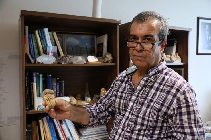 Antalya ve Konya'da 500 milyon yaşında iki fosil bulundu (2)- Yeniden