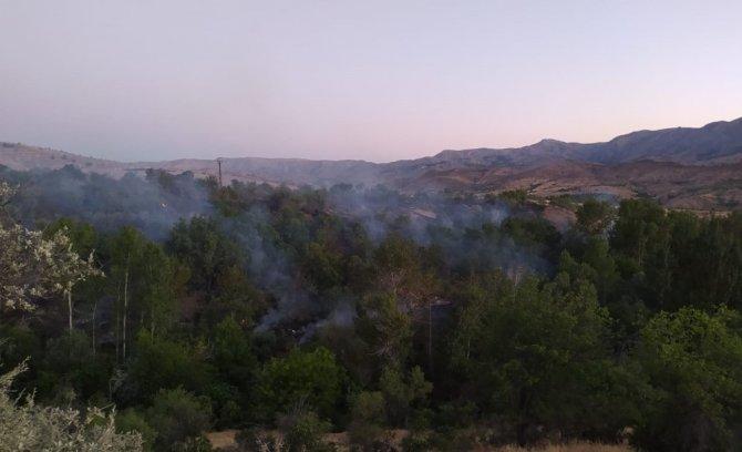 Elazığ'da orman yangını, 30 dönüm zarar gördü
