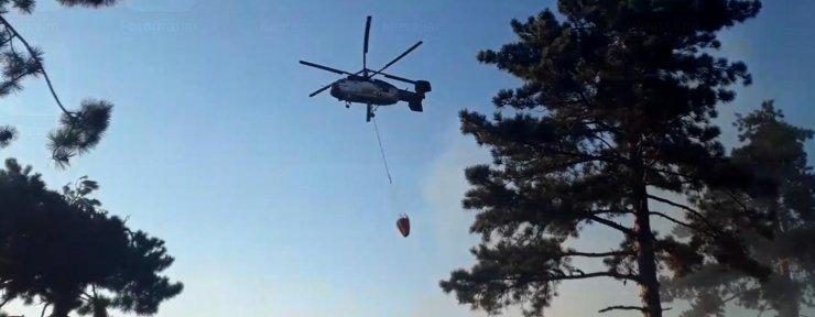 Alaşehir'de orman yangını 1 saatte söndürüldü