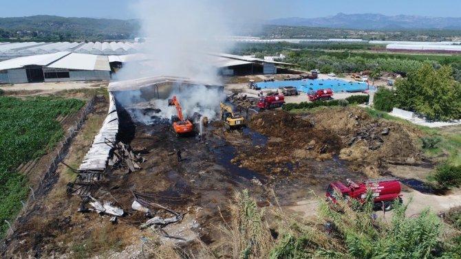 Antalya'da çiftlikteki yemler alev alev yandı
