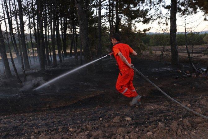 Balya makinesinden sıçrayan kıvılcımlar orman yangınına neden oldu