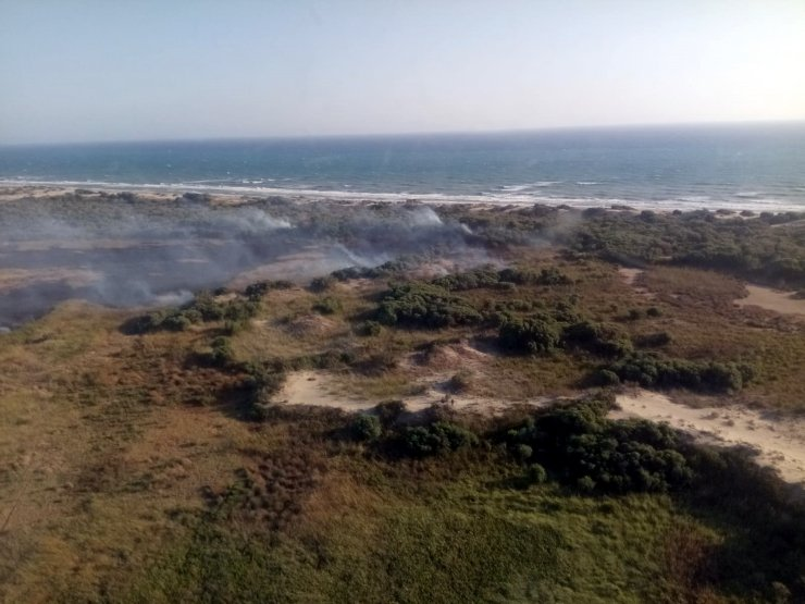 Kaş'ta sazlık alanda yangın