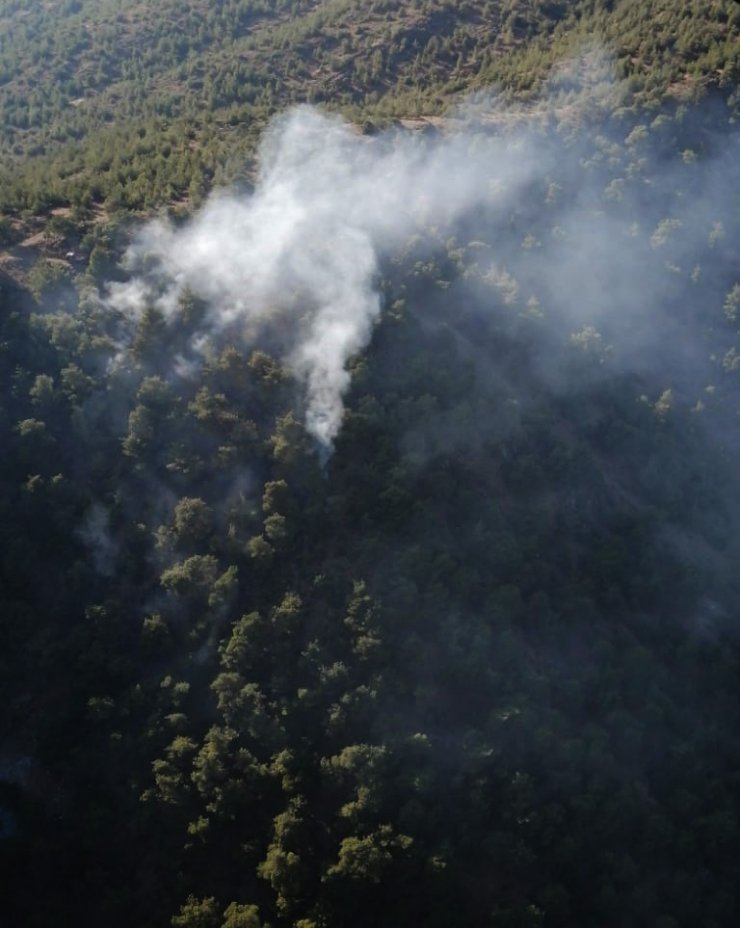 Gaziantep'te orman yangınında 3 dönüm alan zarar gördü