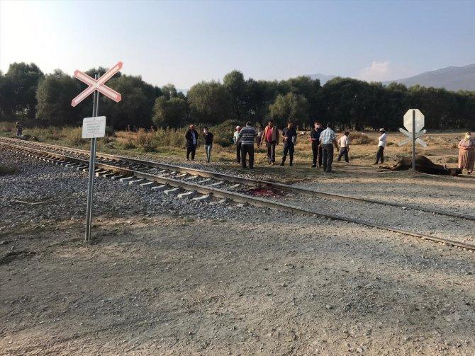 Akşehir'de yük treninin çarptığı sürüdeki 8 hayvan telef oldu