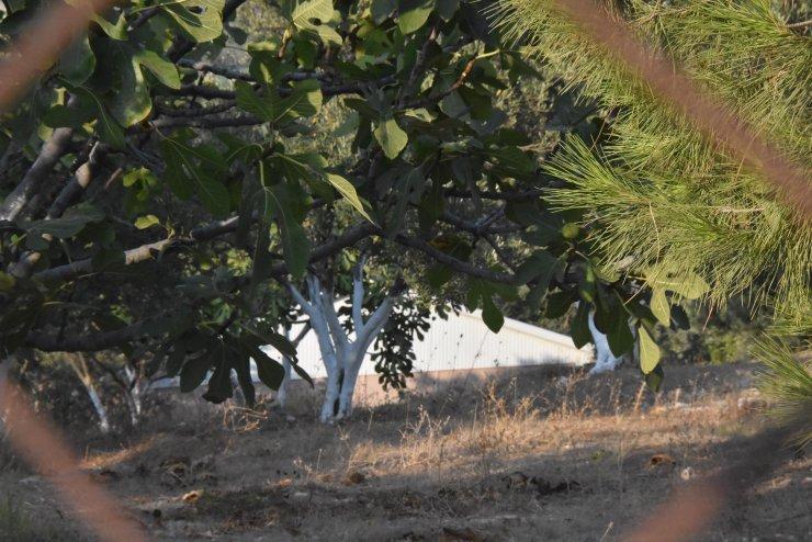 İşte Didim Belediye Başkanı'nın tecavüzle suçlandığı çiftlik evi