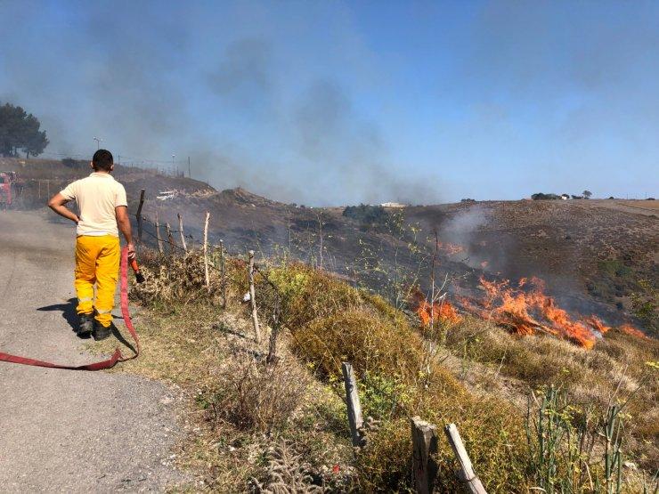 Sinop'taki yangında 10 dönüm otluk alan zarar gördü
