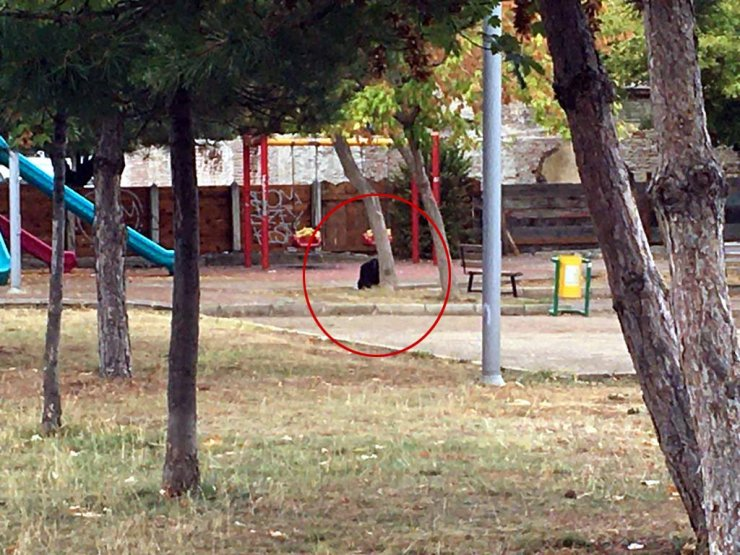 Çocuk parkındaki şüpheli çanta fünye ile patlatıldı