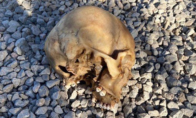 Tutuklanan zanlı, kafatası bulunan tersane işçisiyle kaybolduğu gün aynı barakadaymış