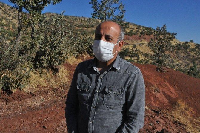 Şırnak'ta tedavi edilen kartal, kerkenez ve şahinler doğaya bırakıldı
