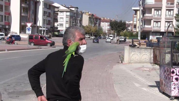 Papağanıyla sokaklarda geziyor