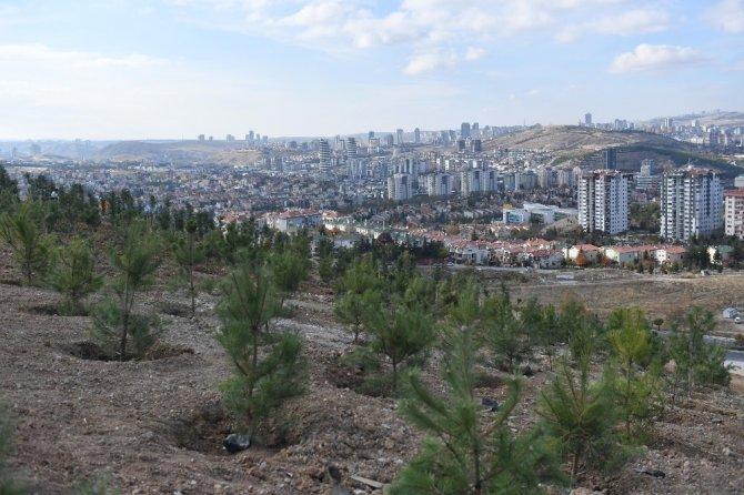 Ceren Damar Şenel'in adı Ankara'da hatıra ormanında yaşayacak