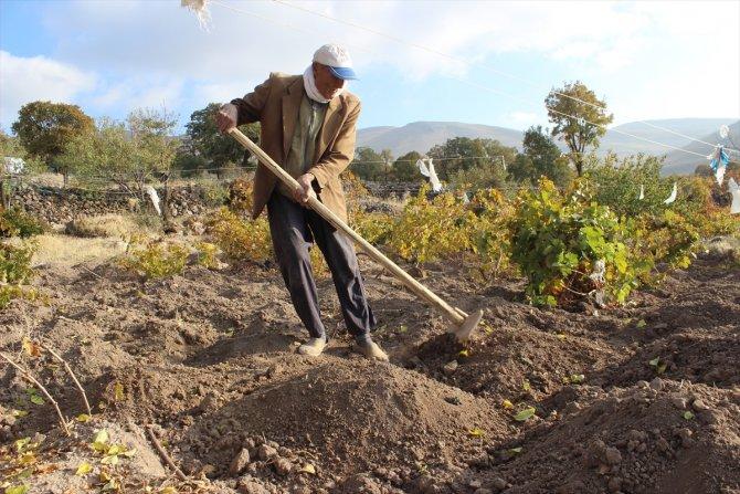 88 yaşındaki Aşır dede, azmiyle gençlere taş çıkartıyor