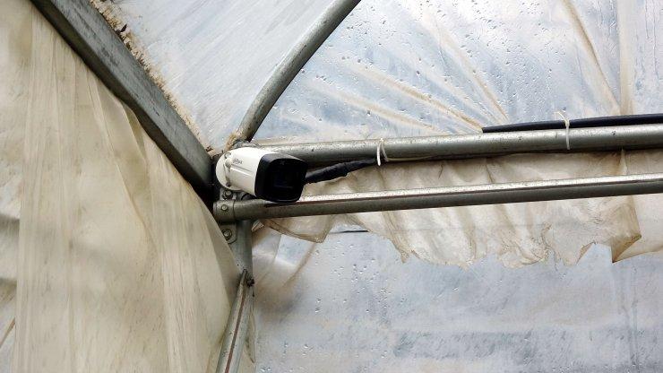 Serasından soba kablosu çalınan üretici: Tedarik edemezsem 150 bin liralık mahsul zarar görecek