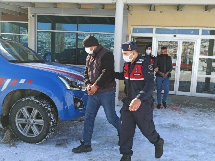 Ağıldan124 koyun çalan 7 kişi tutuklandı