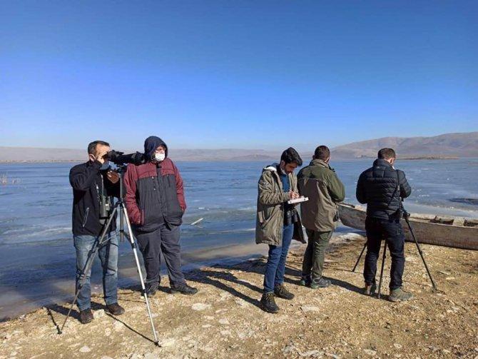 Konya'nın göllerinde su kuşlarının sayımı tamamlandı