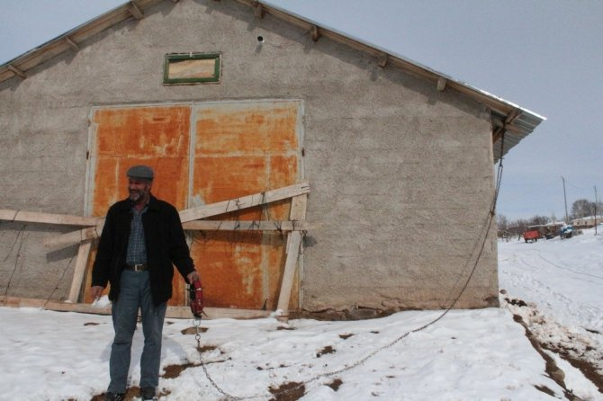 Köye inen kurt sürüsü köpeği parçaladı, o anlar kameraya yansıdı