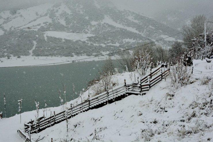 Tunceli'de 250 köy yolu kardan kapandı