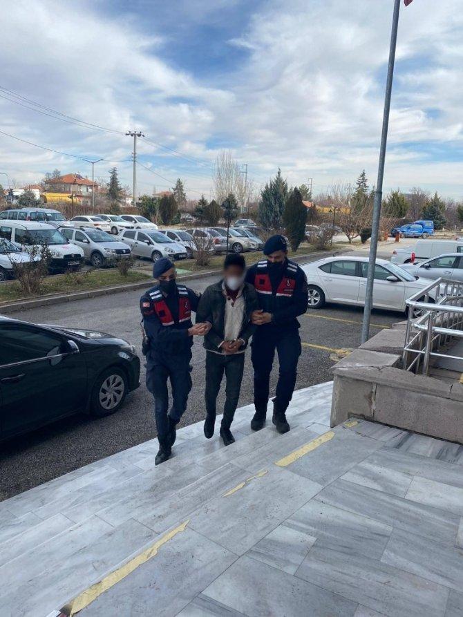 Konya'da meyve fidanı hırsızlığı jandarmaya yakalandı