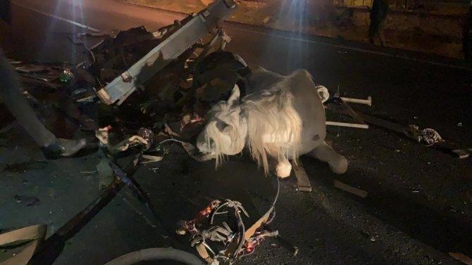 Otomobilin çarptığı at arabasının sürücüsü öldü, at yaralandı