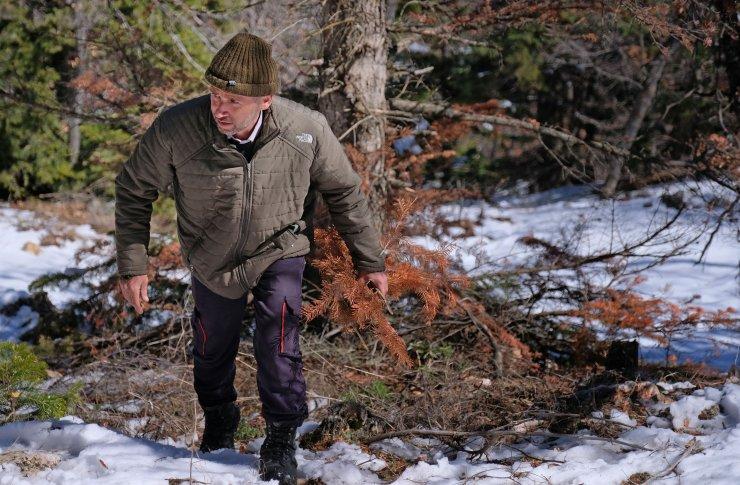 Babası 6 yaşında Toroslar'a bıraktı, 'doğa kahramanı' oldu