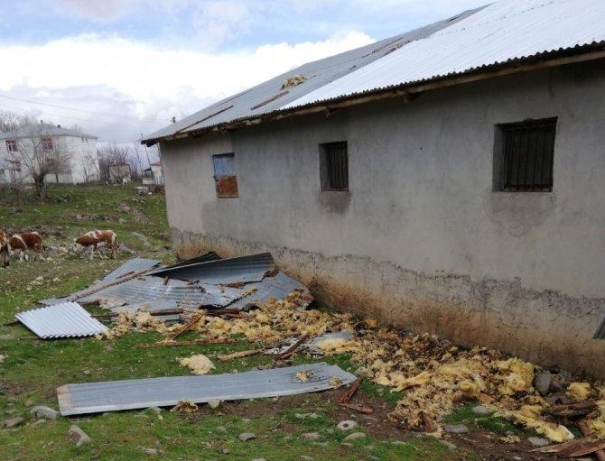 Fırtına direkleri devirdi, çatıları uçurdu 10 kuzu telef oldu