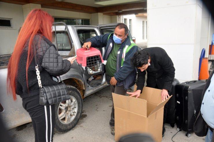 Karaman'da, aracın kara saplandığı bölgede kaybolan genç aranıyor