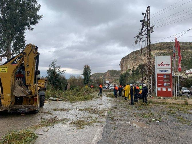 Fırtınada devrilen ağaçlar araçlara zarar verdi