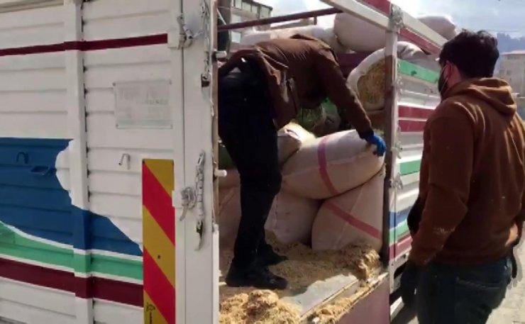 Uyuşturucuları, kamyonetteki saman çuvallarının altına gizlemişler