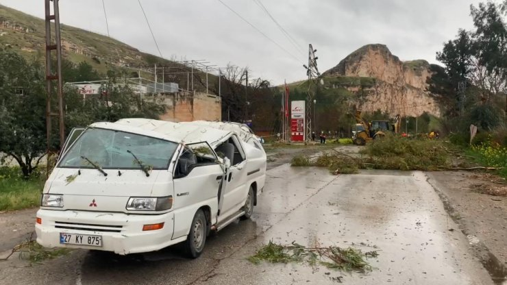 Fırtına; ağaçlar devrildi, 4 araç hasar gördü