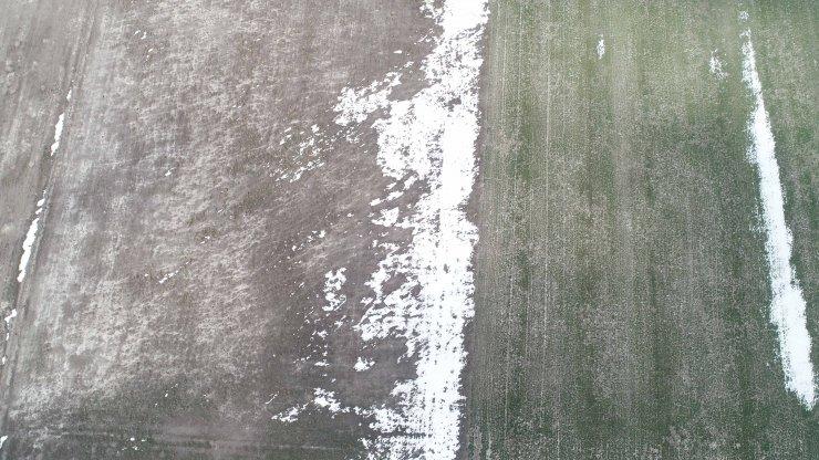 Son yağışlar Konya Ovası'nda çiftçinin yüzünü güldürdü