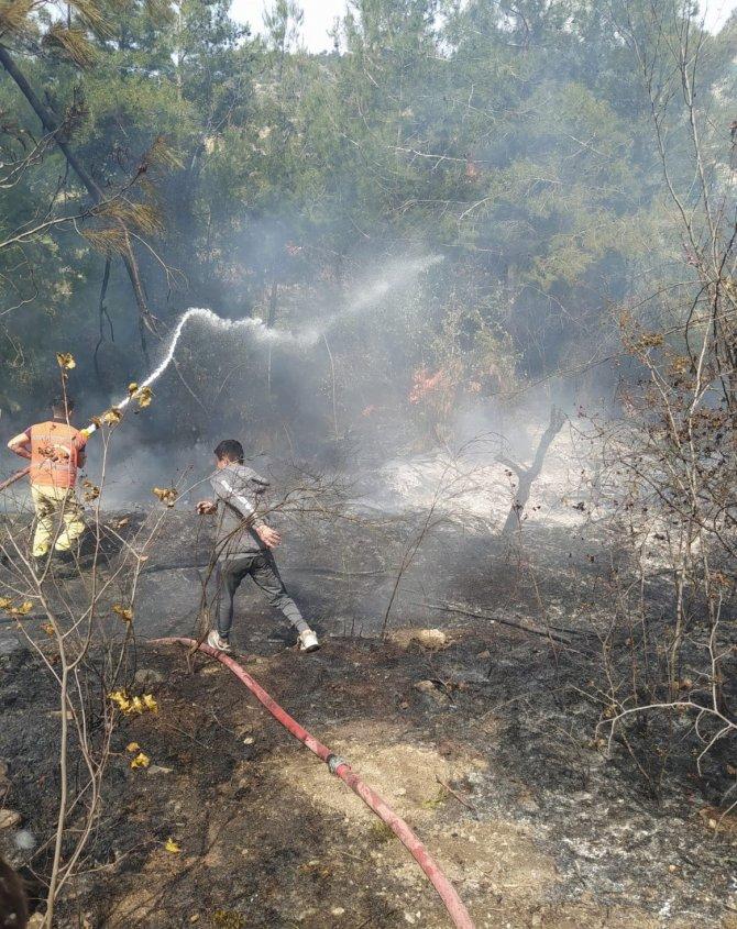 Orman yangınında 4 hektar alan zarar gördü