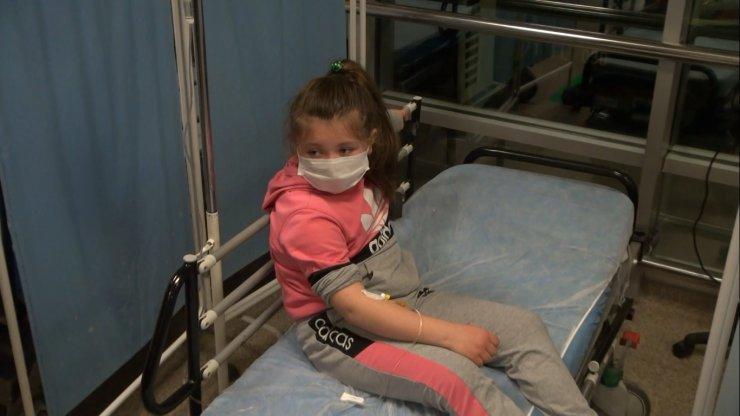 Başıboş gezen pitpul, 8 yaşındaki çocuğa saldırdı