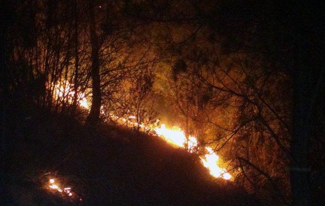Orman yangınları erken başladı