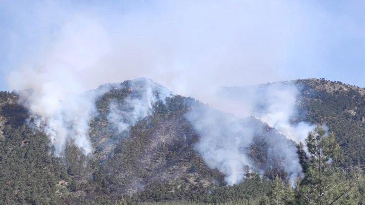 Orman yangını mangaldan çıkmış