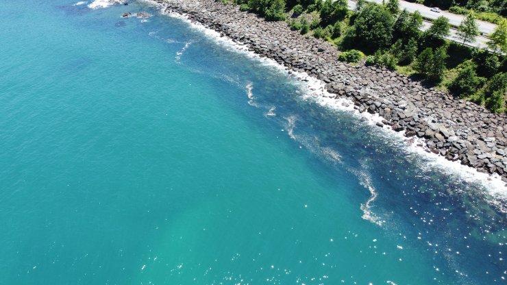 Karadeniz'deki kirlilikte 'müsilaj' endişesi