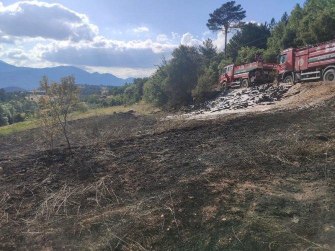 Erken müdahale yangının ormana sıçramasını önledi