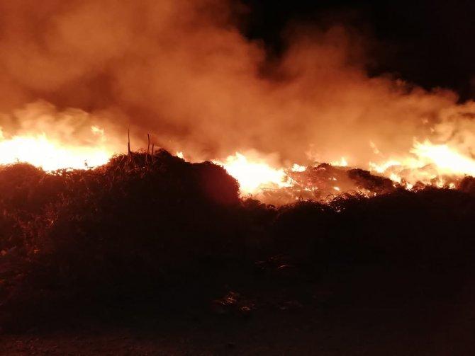 Hatay'da bahçe yangını korkuttu