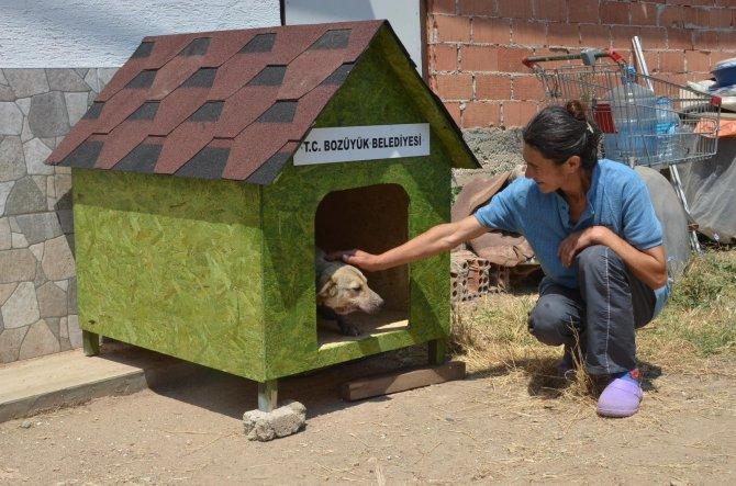 Kendi imkanlarıyla ürettikleri kulübeler sokak hayvanlarına yuva oluyor