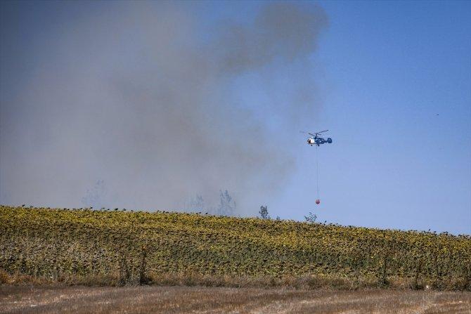 Tarlada başlayıp ormanlık alana sıçrayan yangın kontrol altına alındı