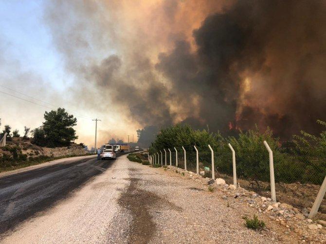 Orman yangını büyüyor