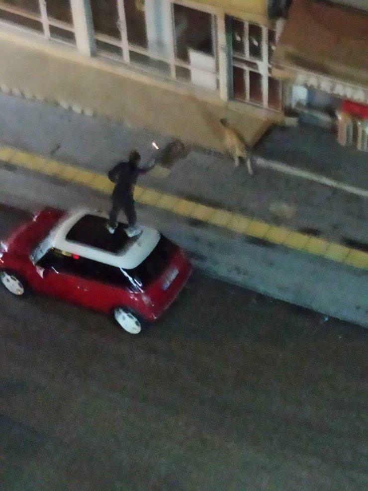 Otomobilin üzerine çıktı, köpekleri çakmakla uzaklaştırmaya çalıştı