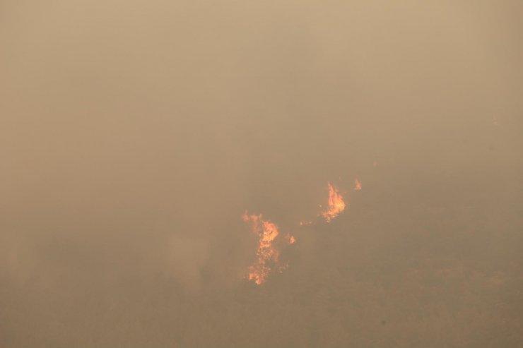 Orman yangını ikinci gününde