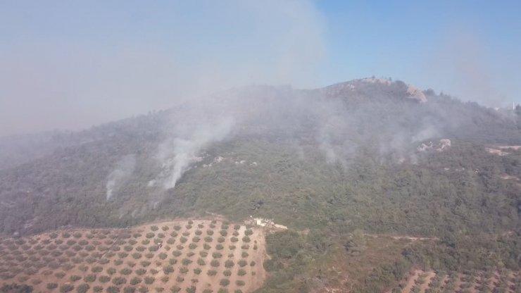Osmaniye'deki orman yangınında 2'nci gün; havadan müdahale yeniden başladı
